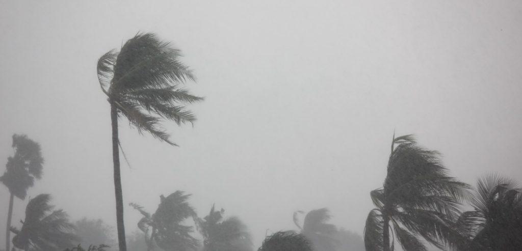 Message de soutien aux Antilles