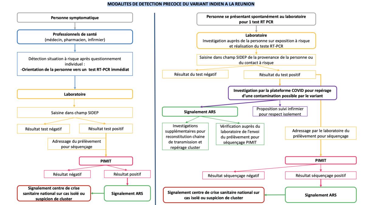 Modalités de détection précoce du variant indien à La Réunion